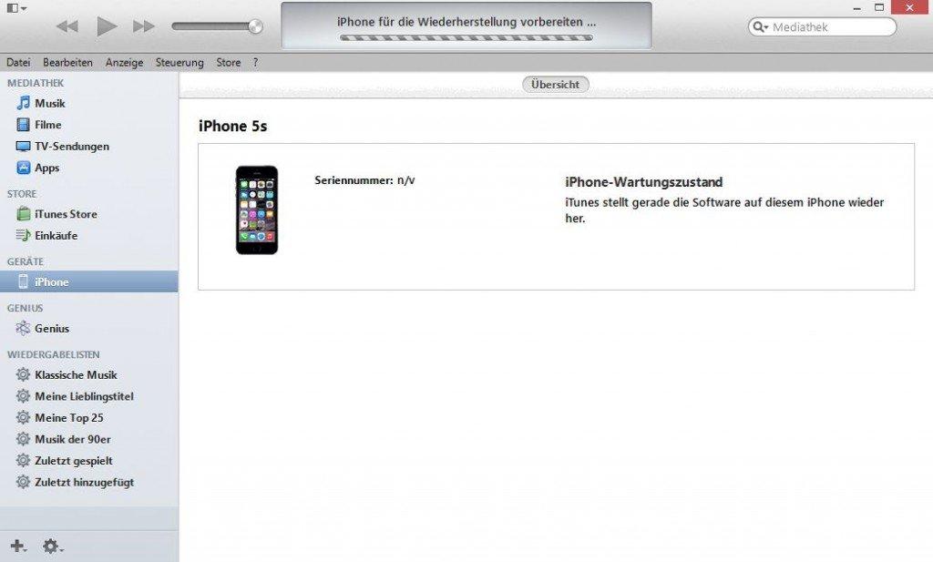 iPhone Fernlöschen SIM-PIN Aktivierung Problem iTunes Wartungszustand