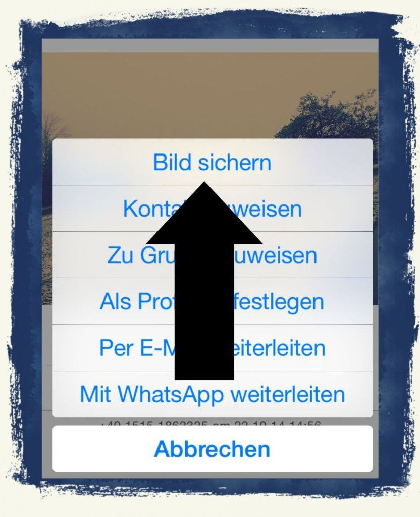 iPhone,WhatsApp,Foto,speichern,Camera Roll 3