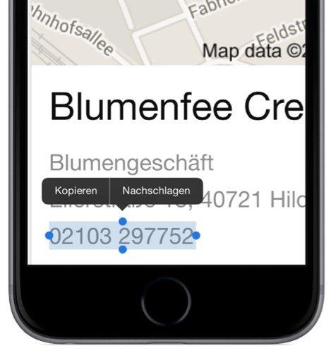 TelefonnummerSafariWeb-BrowserKopierenZwischenablageEinfügenTelefonieren-1.jpg