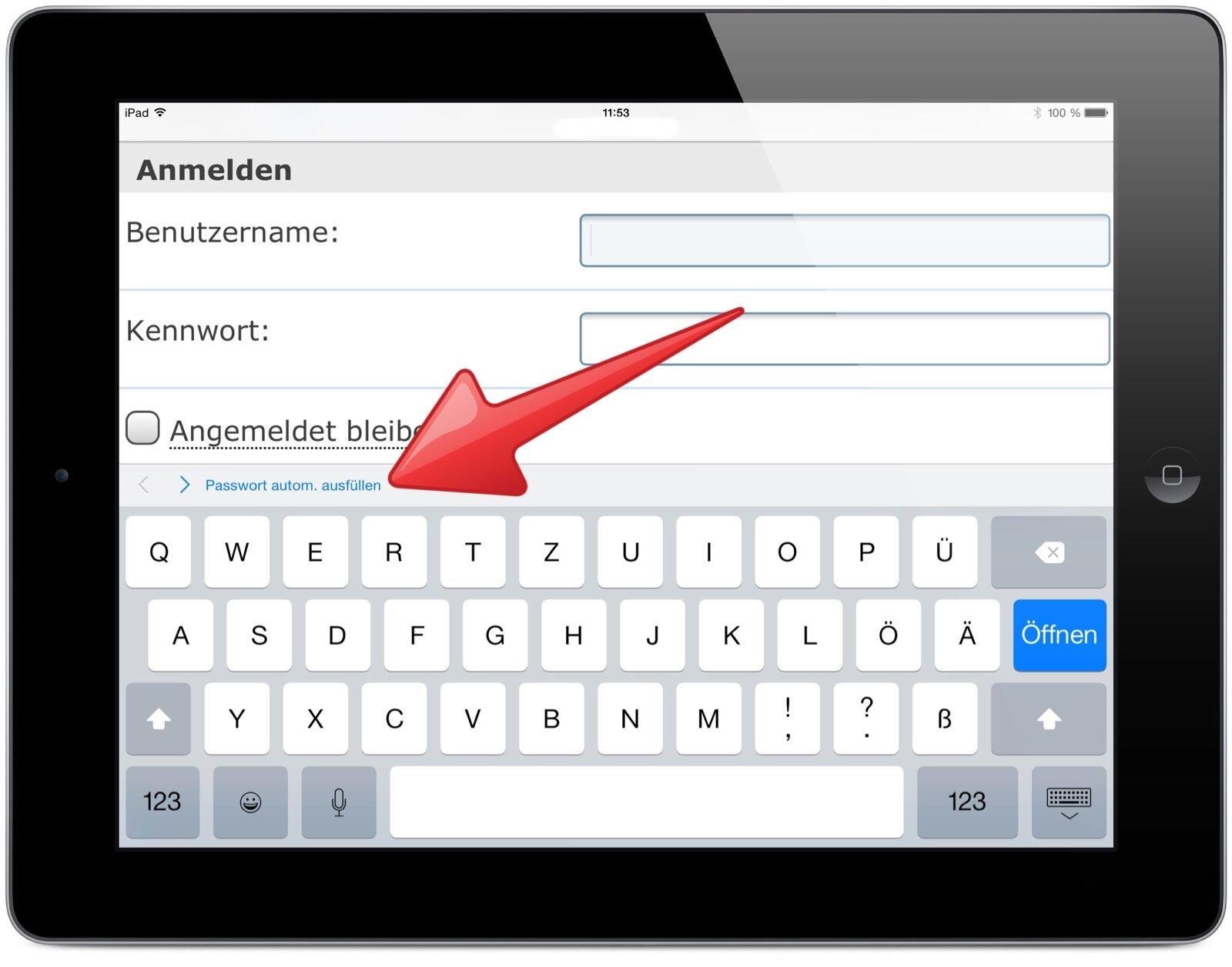 iPad Safari Schlüsselbund Passwort Kennwort speichern 1