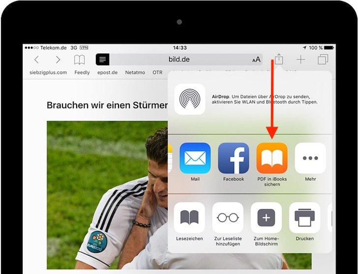 iPad Reader-Ansicht PDF konvertieren speichern iBooks exportieren 4