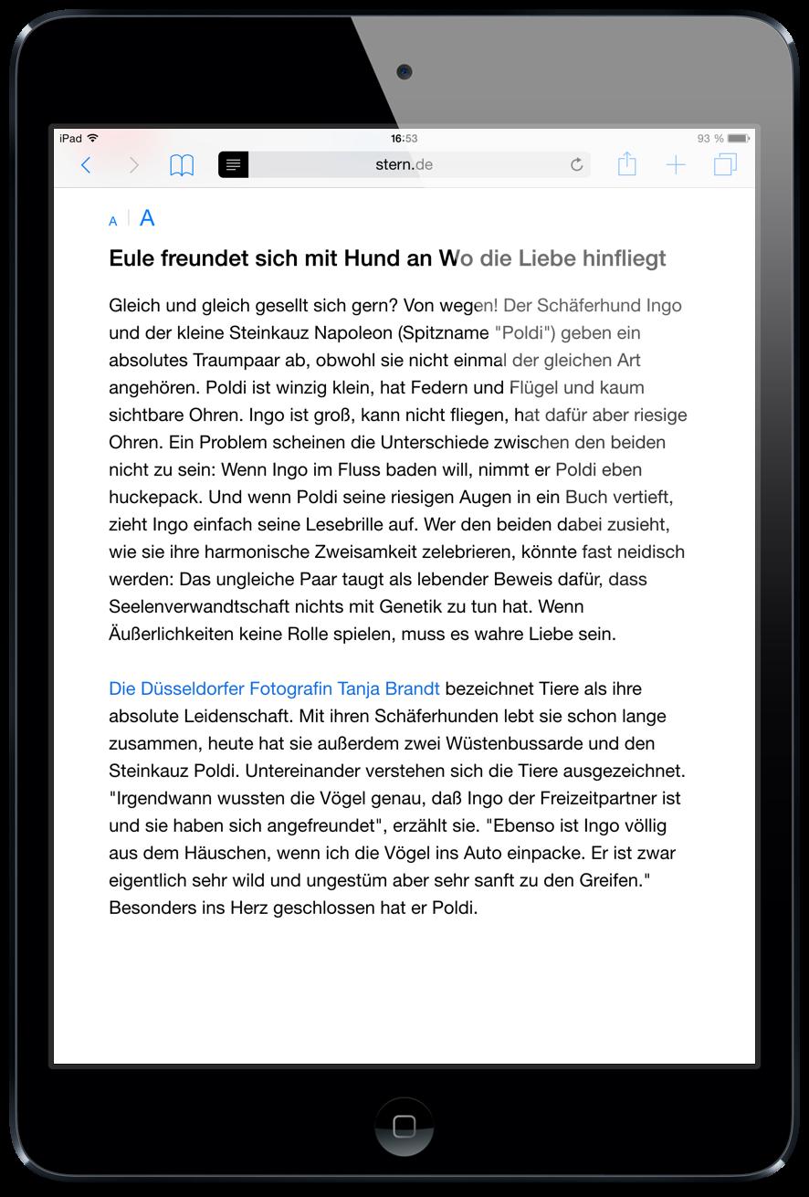 iPad-Safari-Reader-Ansicht-verfügbar-Lesbarkeit-4.png